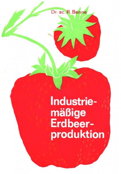 Industriemäßige Erdbeerproduktion | Benne, Reinhard